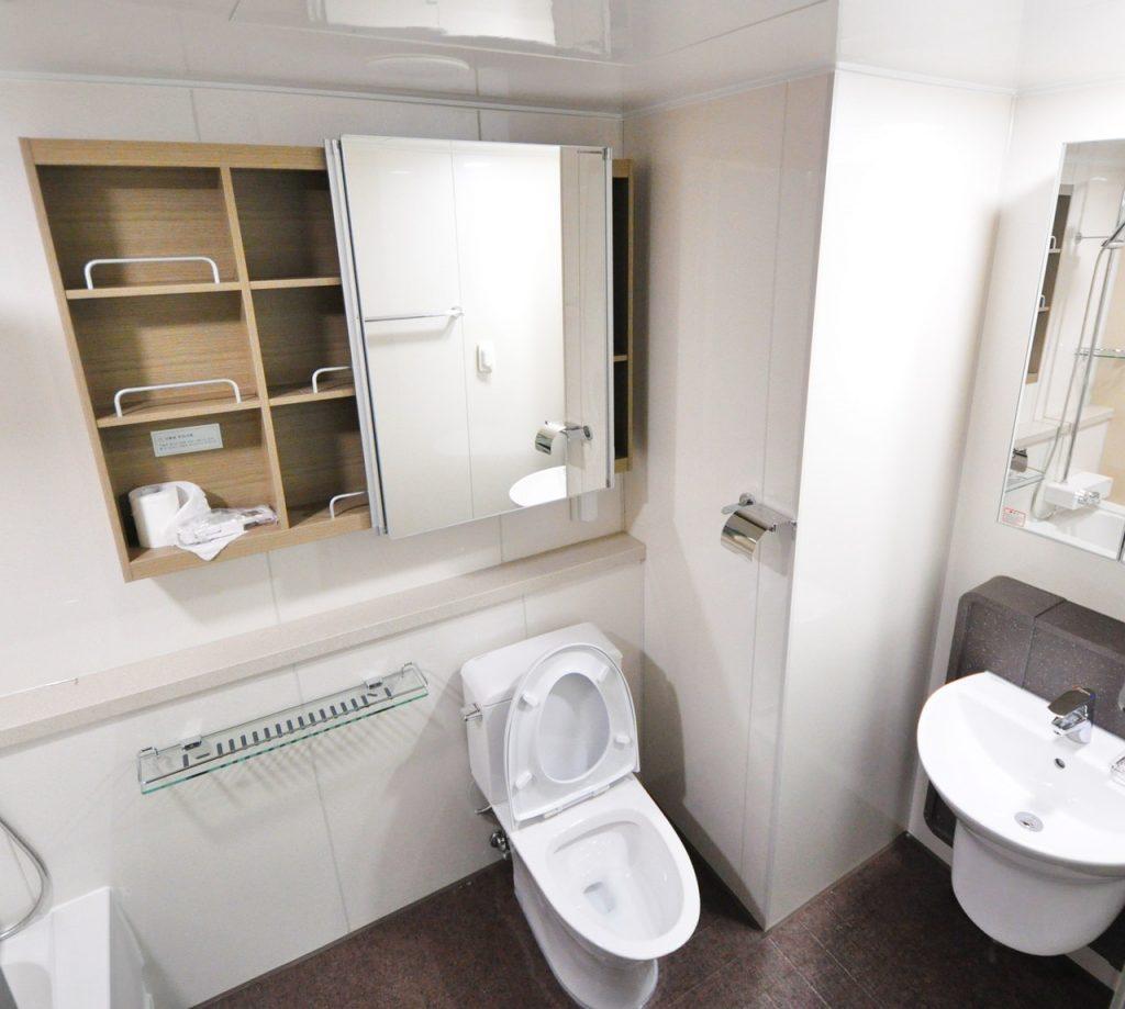 bathroom toilet white