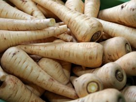can you freeze parsnips