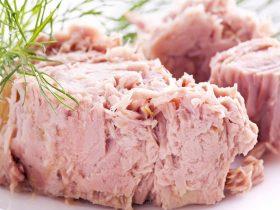 can you freeze tuna