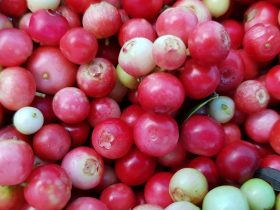 do cranberries have seeds